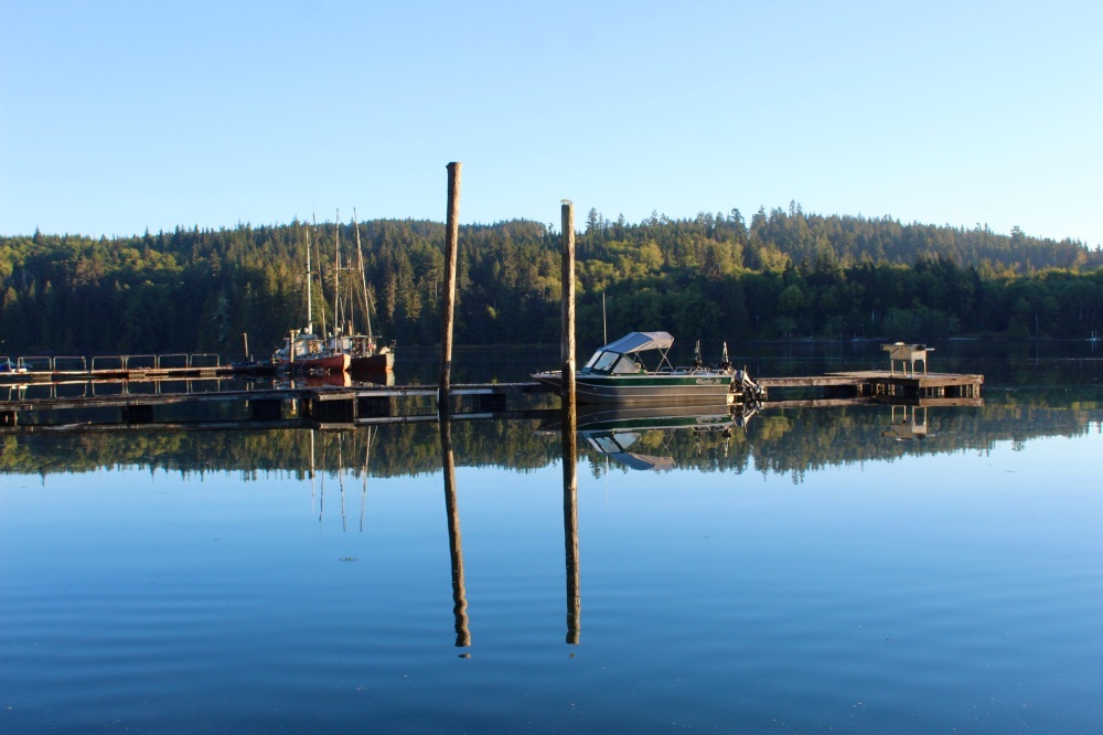 September, 2020 - Morning stillness - Hecate Cove, Quatsino Sound, Vancouver Island, British Columbia, Canada