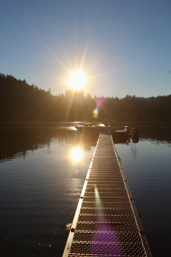 September, 2020 - Hecate Cove, Vancouver Island, British Columbia - Morning sun over the dock