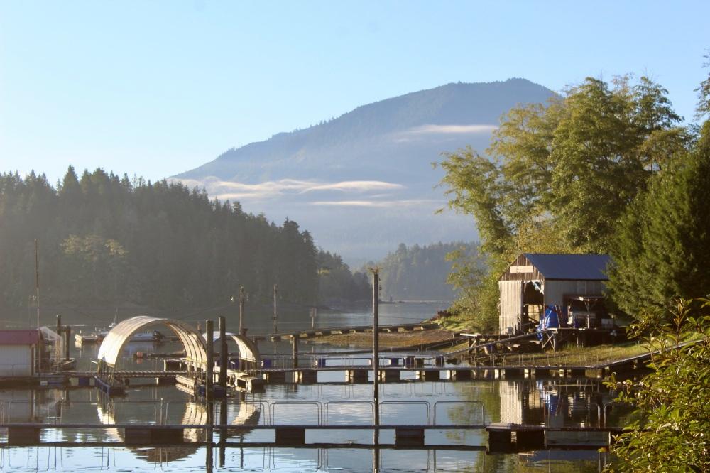 September, 2020 - Morning clouds - Hecate Cove, Quatsino Sound, Vancouver Island, British Columbia, Canada
