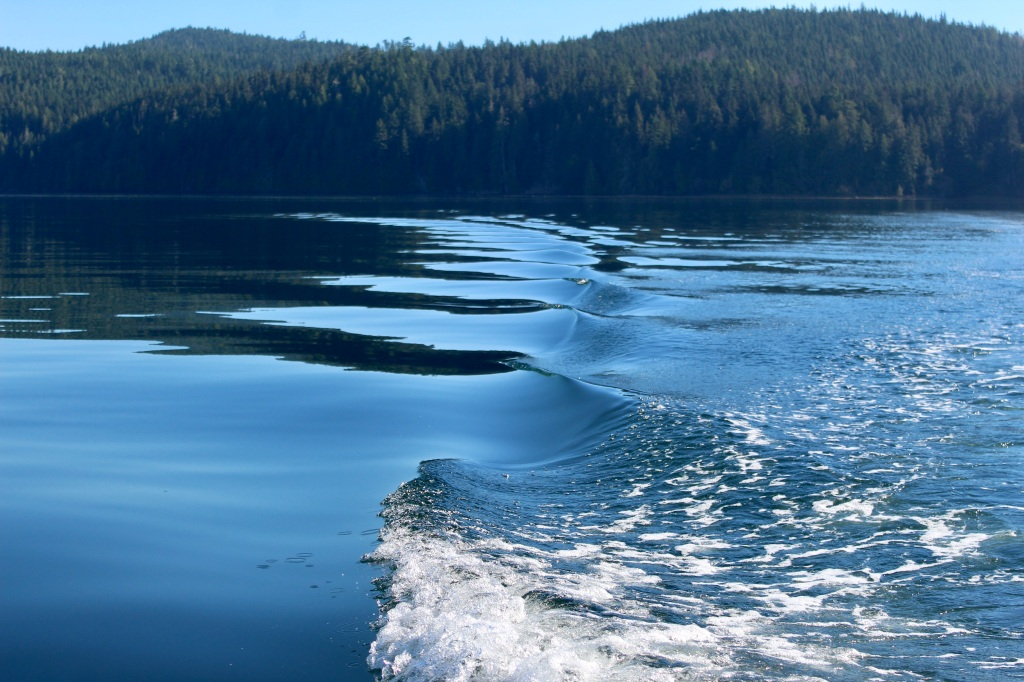 September, 2020 - Quatsino Sound, Vancouver Island, British Columbia - Wake