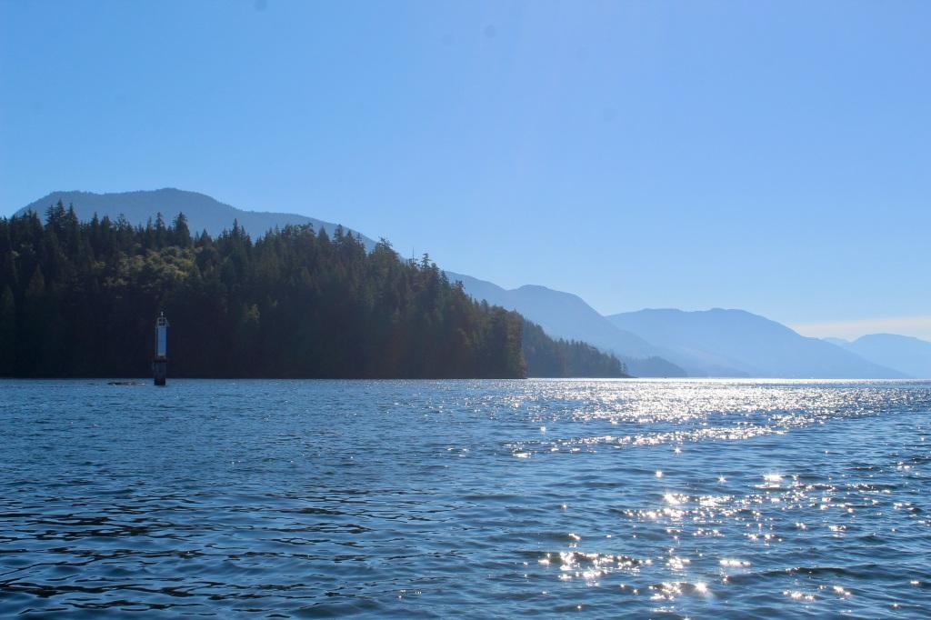 September, 2020 - Quatsino Sound, Vancouver Island, British Columbia - Sunshine on the water