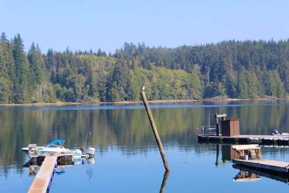 September, 2020 - Hecate Cove, Vancouver Island, British Columbia - Calm