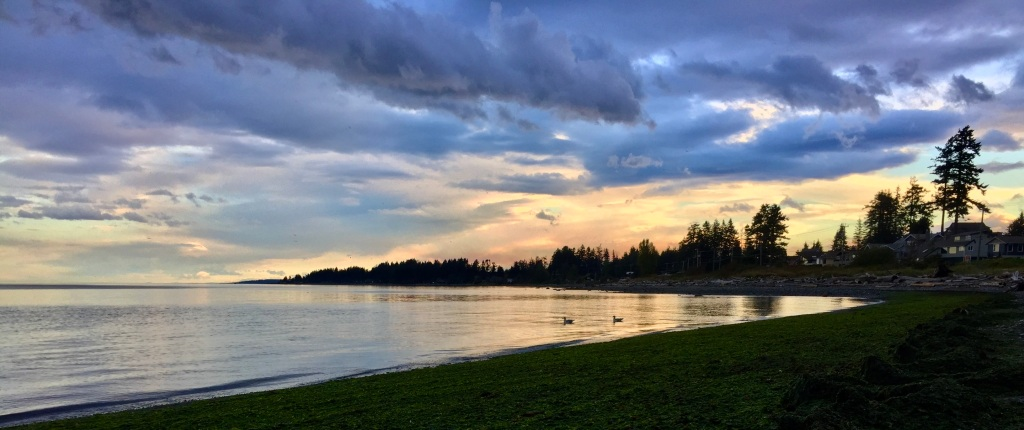 October 10th, 2020 - Campbell River, Vancouver Island, British Columbia - Sunshine