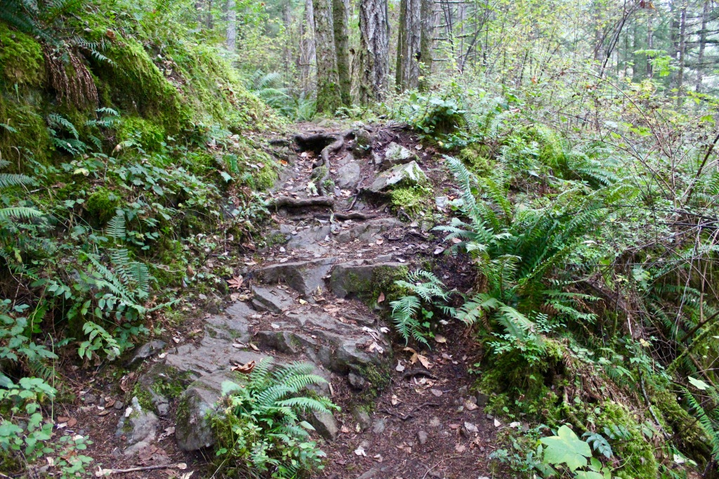 Vancouver Island, British Columbia - Ripple Rock Trail