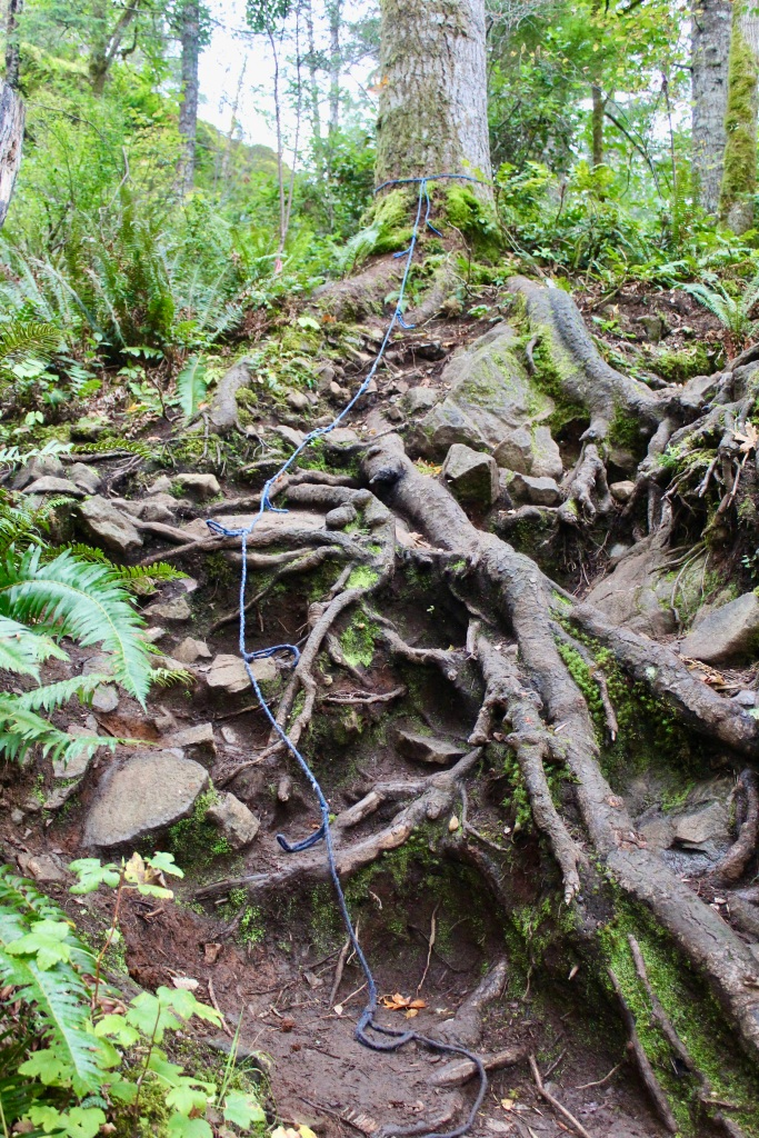 Vancouver Island, British Columbia - Ripple Rock Trail - Climbing rope to help get up, over the tree roots