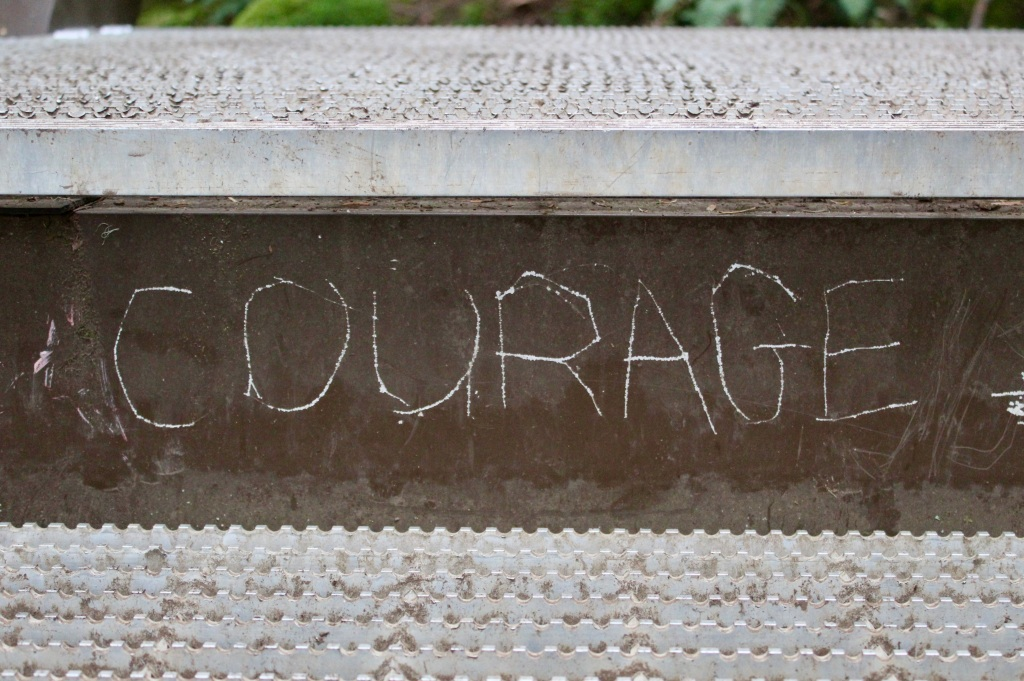 Vancouver Island, British Columbia - Ripple Rock Trail - Message carved on the steps - Courage