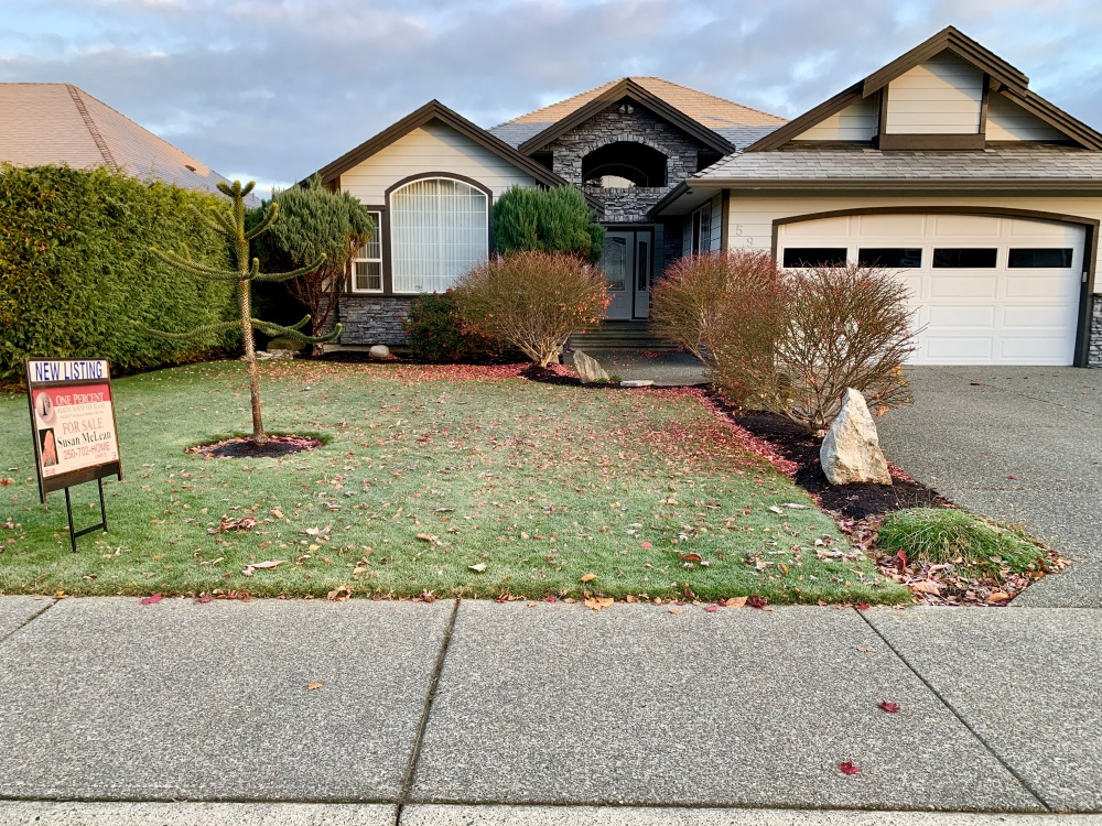 November 14th - Campbell River, Vancouver Island, British Columbia - My usual check of the front lawn - making sure everything looks good.