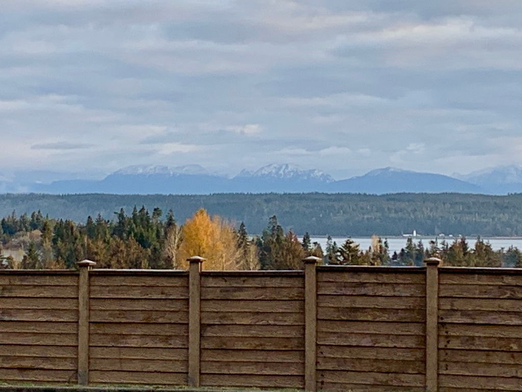 November 14th - Campbell River, Vancouver Island, British Columbia - I'll miss this view, as I turn up the drive to enter Beaver Lodge Lands.