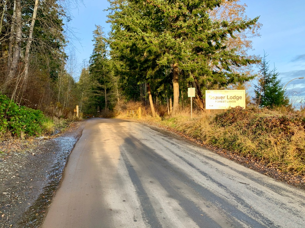 November 14th - Campbell River, Vancouver Island, British Columbia - Up the drive to Beaver Lodge Lands.