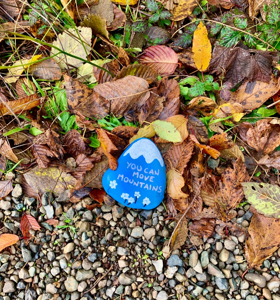 November 14th - Campbell River, Vancouver Island, British Columbia - This painted rock, along the trail parallel to S. Dogwood, has been there since the start of COVID - and my time in Campbell River.