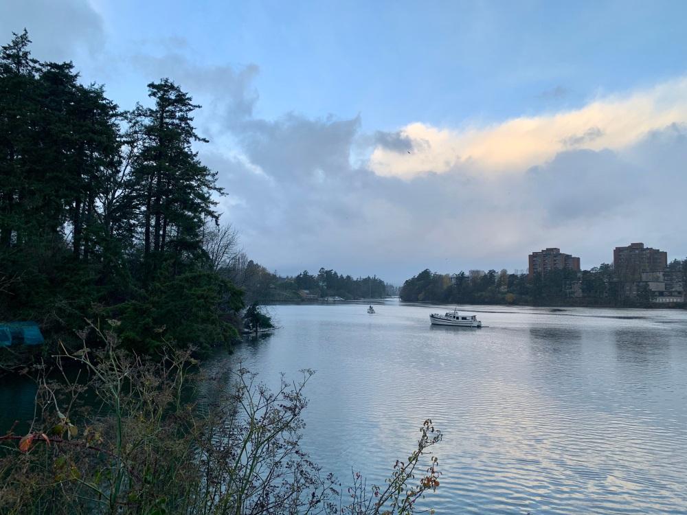 November 15th, 2020 - Victoria, Vancouver Island, British Columbia - Morning run