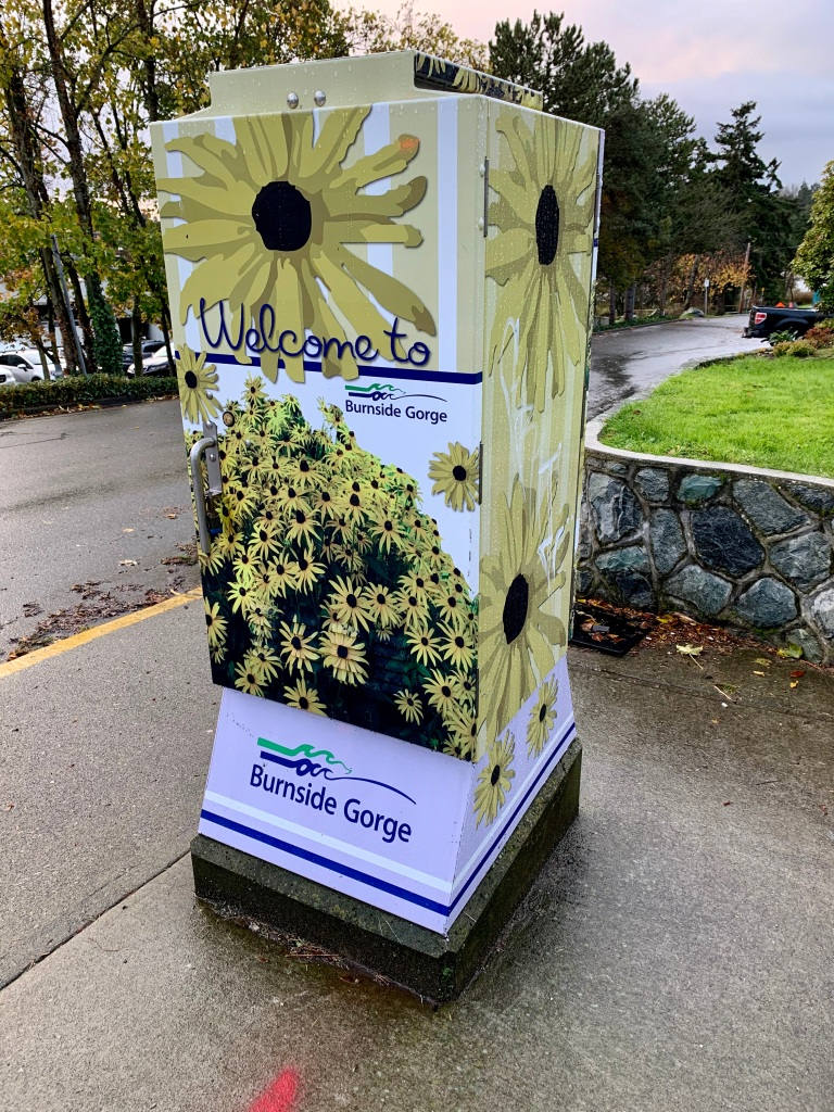 November 15th, 2020 - Victoria, Vancouver Island, British Columbia - Morning run - Happy colors!