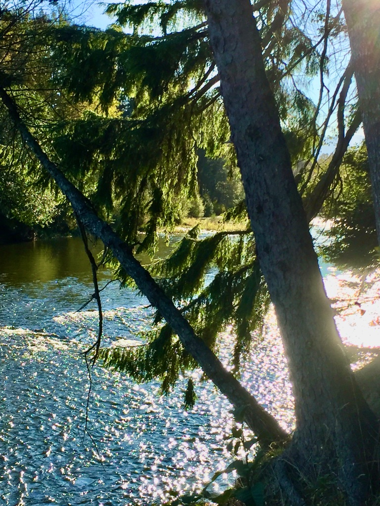 Oyster River, Vancouver Island, British Columbia - Oyster River