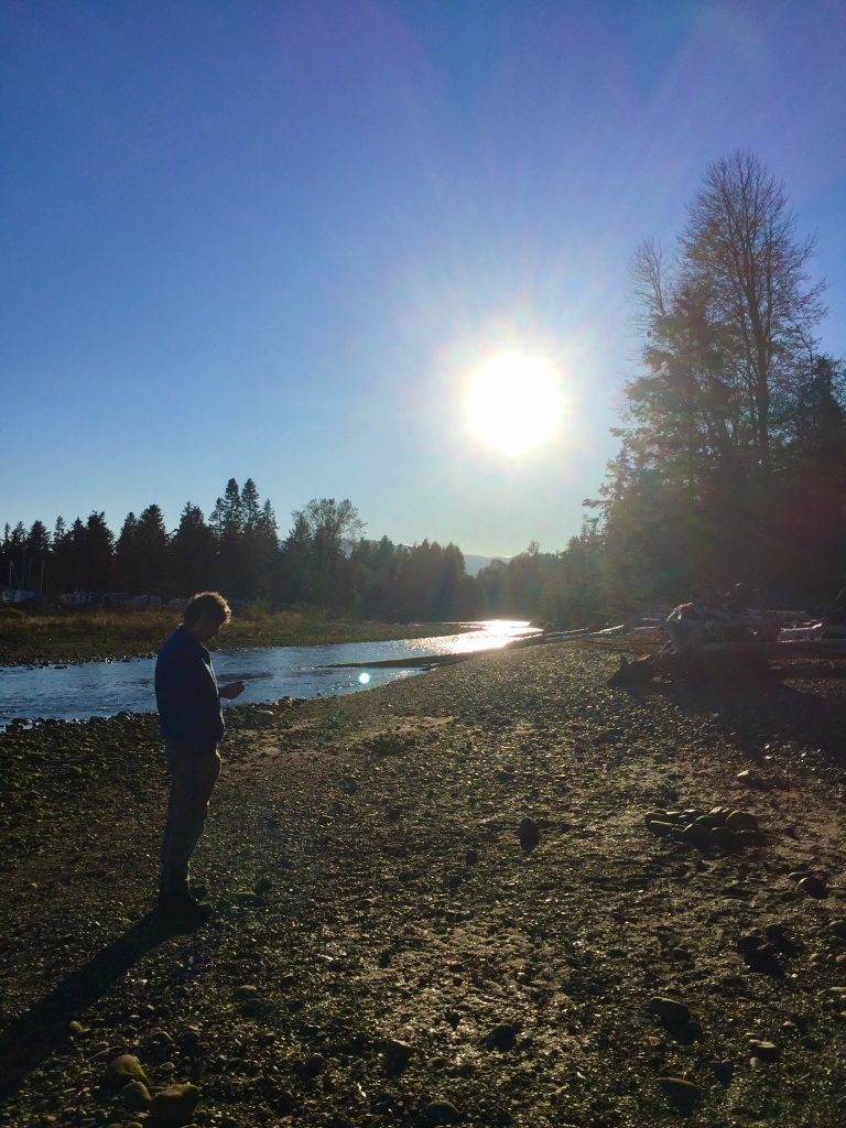 Oyster River, Vancouver Island, British Columbia - At the mouth of the river - a lone rock collector!