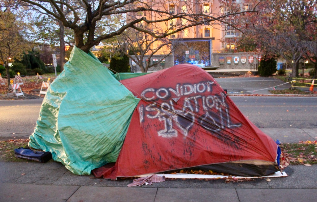 November 14th, 2020 - Victoria, Vancouver Island, British Columbia - Waterfront - Maybe a homeless person's makeshift home?