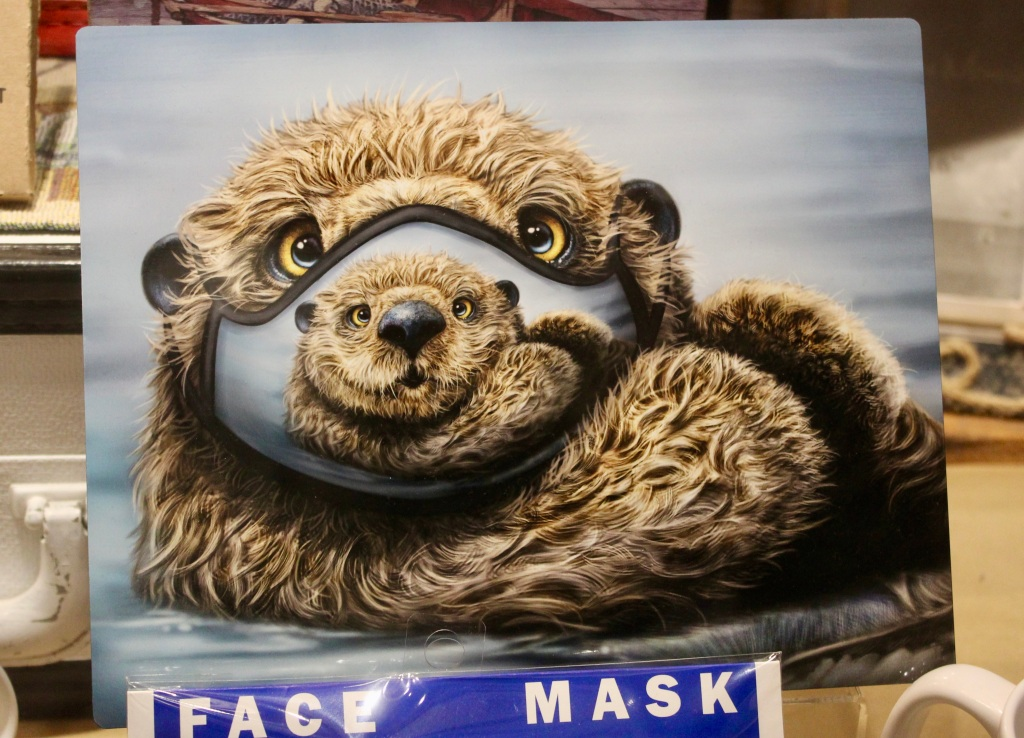 November 14th, 2020 - Victoria, Vancouver Island, British Columbia - Waterfront - Sea otter face mask!