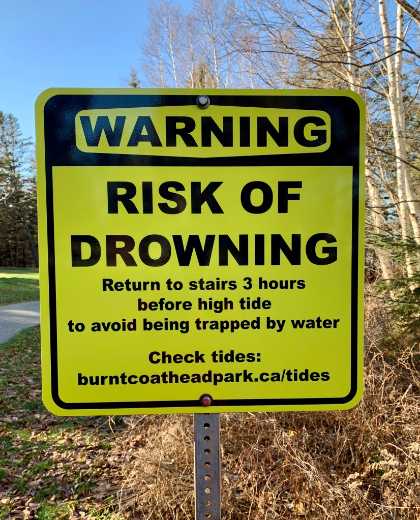 Christmas Eve Day, 2020 - Burntcoat Head Park - Risk of Drowning