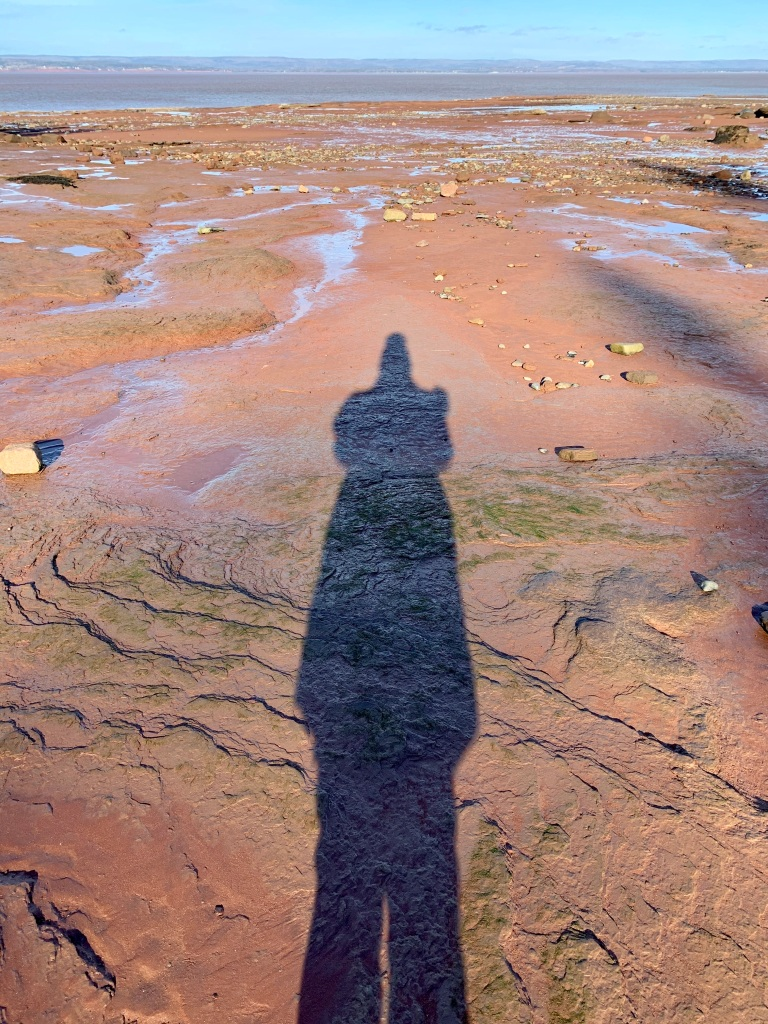 Christmas Eve Day, 2020 - Burntcoat Head Park - Me and my Shadow!