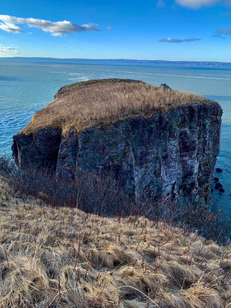 New Year's Day, 2020 - Cape Split - Walking to the edge
