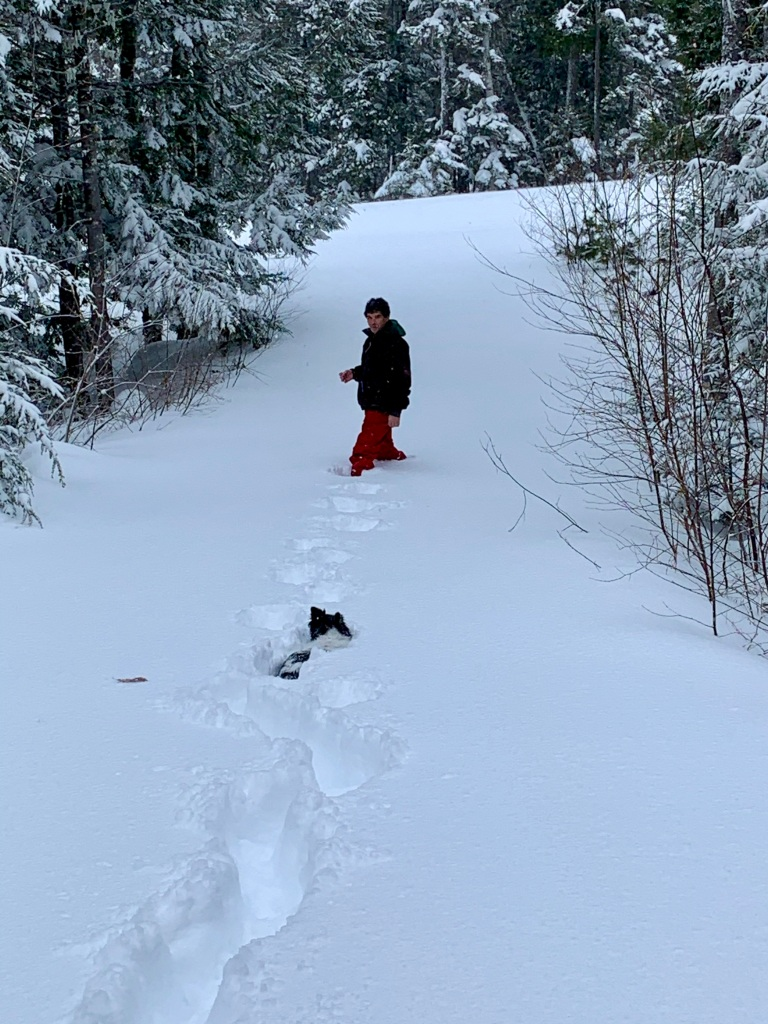 February 8th, 2021 - Snow Day - Falls Lake Resort - Michael tries to walk Pooh Bear to the end of the driveway!