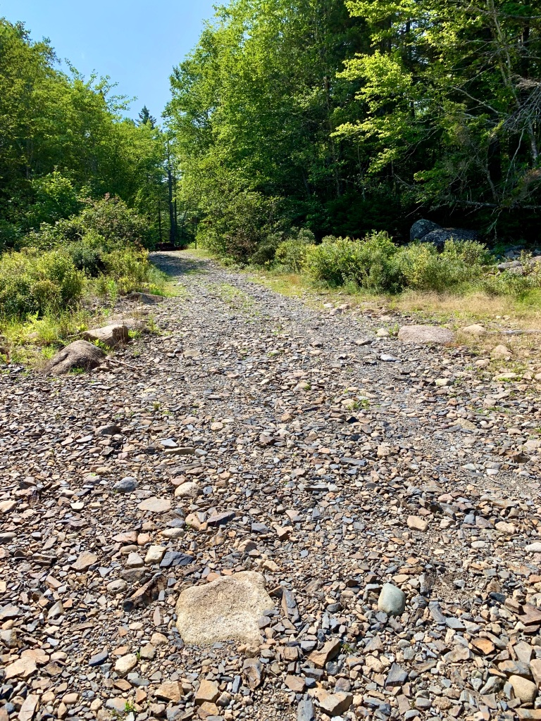 August 27th, 2021 - Card Lake - Boat launch driveway