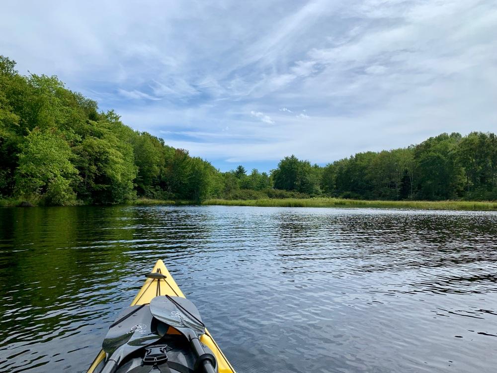 September 1st, 2021 - Mockingee Lake, Vaughan, Nova Scotia - Spotting something interesting ahead