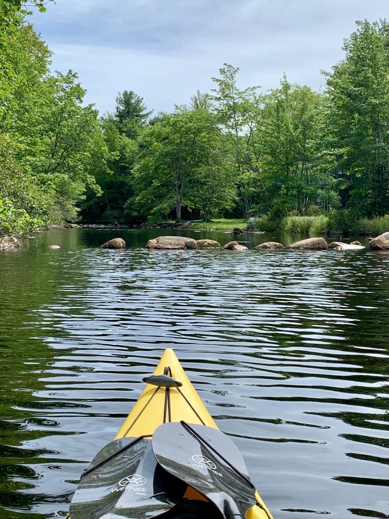 September 1st, 2021 - Mockingee Lake, Vaughan, Nova Scotia - Looks to be!