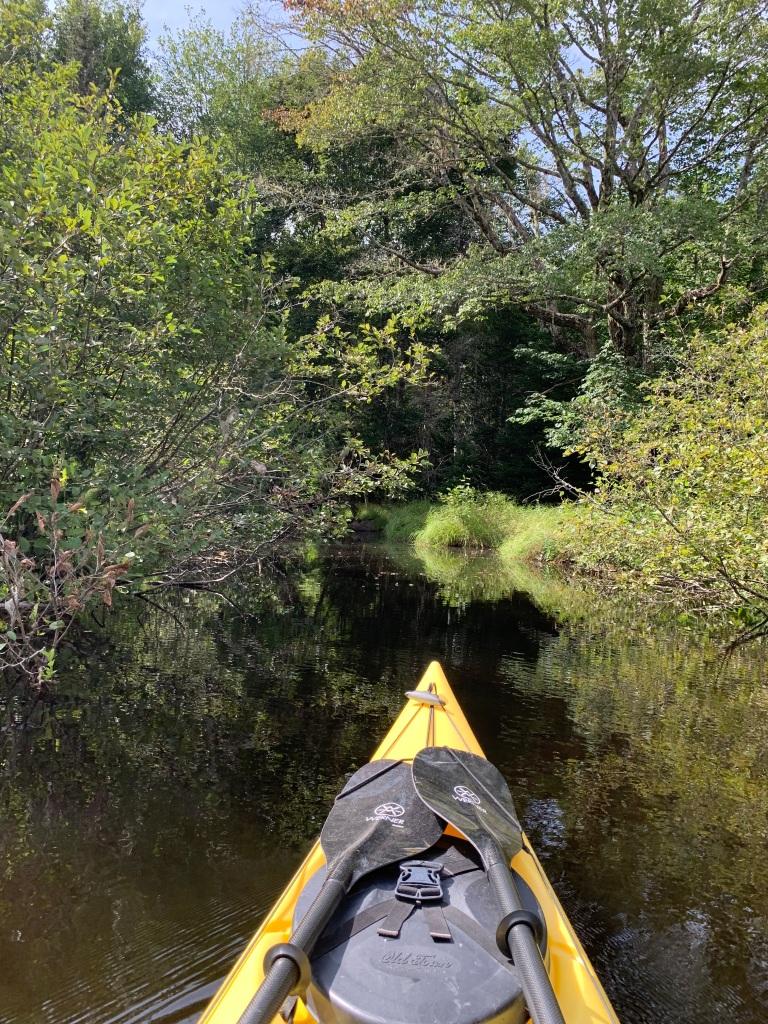 September 1st, 2021 - Mockingee Lake, Vaughan, Nova Scotia - Discovering the entrance to Shinglemill Brook
