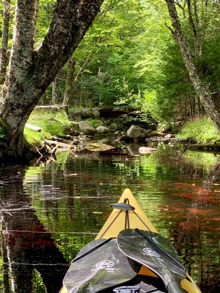 September 1st, 2021 - Mockingee Lake, Vaughan, Nova Scotia - Shinglemill Brook